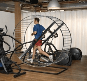 treadmill hamster